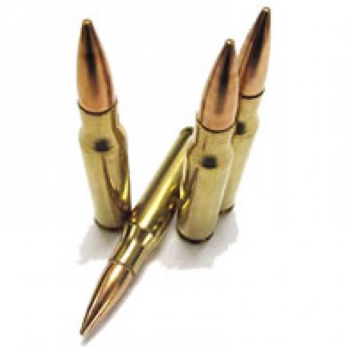 .308 Winchester (9)